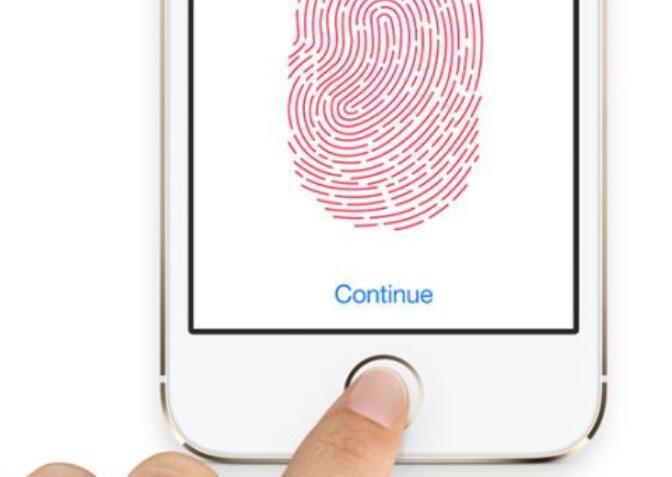 指纹传感器定义和应用