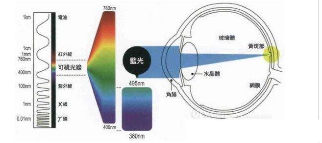 不容忽视的LED蓝光三大伤害,隐形杀手更恐怖