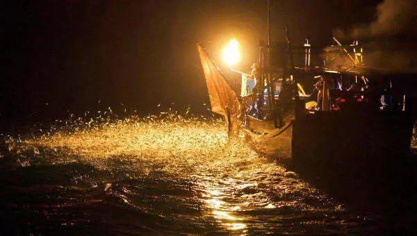 让我们来看看新型LED集鱼灯在哪些方面表现不俗呢?