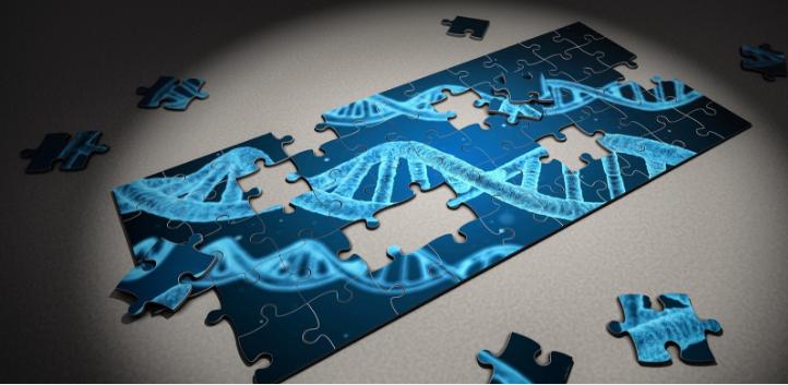 6年前的一款U盘大小DNA测序仪终于有了新用途