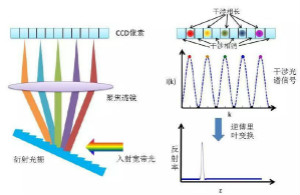 解读光学相干层析成像技术