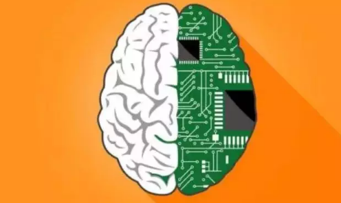 神經系統連接器的未來發展分析