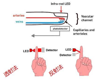 從光學模塊到系統構建來解決,如何實現光學體征信號監測?