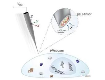 新纳米微滴管pH生物傳感器将有望用于癌症治疗