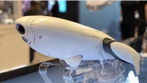 市场规模达千亿美元,水下机器人的掘金点在哪?