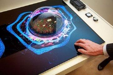 LGD将放弃大尺寸液晶 押宝OLED面板