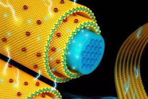使用无纺布电极材料构筑柔性超级电容器